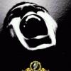Gran Estreno - M30 Ft.DJ Rapero - Ella Se Vuerve Loca.mp3