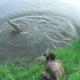 Video: Un fotógrafo se salva 'por los pelos' de ser devorado por un cocodrilo