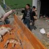 Alerta en China: Al creciente número de cerdos muertos se suman unos mil patos
