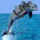 Espia Delfines armados huyen de su base en el mar Negro persiguiendo a una Hembra
