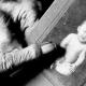 España: Una madre encuentra a su bebé robado hace 44 años en pleno franquismo