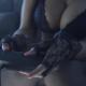 Wale (Feat. French Montana) - Back 2 Ballin (OFFicial video) 2013 DIablo miren esto que NICE