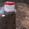 VIDEO PERO MIREN COMO ESTO EXPLOTO TA RRARO German Guy Builds Huge Firecracker