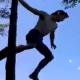 VIDEO Hombre se tiro de arbol para un rio pero quedo enganchao miren lo que le paso