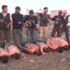 Un vídeo muestra la brutal ejecución de soldados sirios a manos de rebeldes