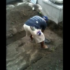 Video Miren este entierro el diablo :Shocking: Family Digs Up Their Grandfather's Grave