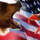 Polos opuestos: las causas de la confrontación actual entre EE.UU. y Rusia