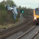 Video captado en camara una abe choca con un tren miren loque paso Bird Flies Into Train And Explodes