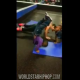 VIDEO NADIE HACE ESTO :He Got It: Lil Boy Does Some Handstand Pushups Like It's No Problem