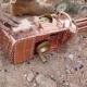 VIDEO PONIENDO AFUNCIONAR UNA ARMA DE FUEGO PODEROSA Functional Steampunk Gatling Gun