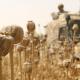 El comercio del opio florece en Afganistán: ¿Se marchitó del todo la misión de EE.UU.?