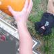 Adolecente mexicano finge su muerte tras recibir 25 puñaladas y escapa de sus captores