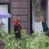 VIDEO UN ARBOL CALLO SOBRE UNA MUJER :Tree Nearly Crushes Woman