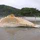 Carcaça de baleia é achada na praia do Camburi em São Sebastião, SP