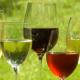 Científicos: Los bebedores viven más que los abstemios  Texto completo en JoJO-Ent.com