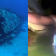 VIDEO SOBREVIVIENTE EN EL MAR INCREIBLE :Man Found Alive In A Sunken Ship