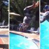 VIDEO QUE MALDITO ESTRALLON JAMA VISTO :Diving Board Backflip Fail