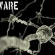 Virus que infecta 250.000 computadoras pide dinero a cambio de archivos personales