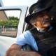 VIDEO Ejército de México retirará las armas de alto poder de autodefensas como parte de acuerdo