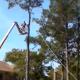 Video Miren este estupido esta loco cheken Tree Trimming Idiot Almost Kills Himself