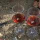 Seve rico este vino miren Commandaria ¿es este el vino más antiguo del mundo?
