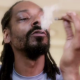 Snoop Dogg Feat. Stevie Wonder & Pharrell Williams - California Roll (New video)