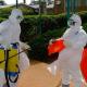 Noticia importante de este momento Vuelve el ébola, el virus más mortal del planeta