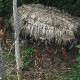 Fotos Jamas vista Publican nuevas fotos de una tribu no contactada de Brasil