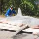Video: Un tiburón gigante pescado en el Golfo de México 'amenaza' el récord mundial miren esto World Record Catch: Fisherman Snares 800lb Shark