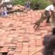 VIDEO Miren este leon devorando personas increible Leopard On Rooftop Has Indian Town In A Frenzy!