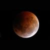 VIDEO  JOJO-ENT Transmite en vivo el espectáculo celeste del mes: la luna sangrante ECPLIPSE