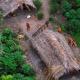 'Espían' vía satélite a una tribu aislada en el Amazonas para salvarla de la extinción mira que imajenes
