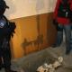 Miren este tunel Una anciana es detenida por un túnel en la frontera de México con EEUU
