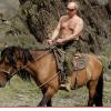 Miren esta foto del precidente Russo Vladimir Putin : Divorce Final Let Freedom Ring VLADIMIR PUTIN DIVORCE FINAL LET FREEDOM RING!
