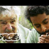 VIDEO Fumando marihuana lleiva hierba con el precidente de uruguay Smoking Weed With The President Of Uruguay (Vice Documentary)