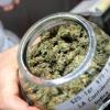 Nuevo paso de Uruguay en la legalización de la marihuana: Los médicos podrán recetarla