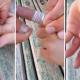 VIDEO Muy util como quitarce un anillo que no quiere salir de tu dedo Remove A Stuck Ring With Dental Floss