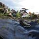 ¿Por qué se hallaron víctimas del vuelo MH17 sin ropa? miren esta noticia