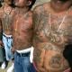 Vídeo: Los Carteles, La Mara Salvatrucha y Violencia en Centroamerica