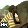 VIDEO Este aqueroso pone su cara en el culo de una vaca Nasty African Man Puts His Face In A Cows Butt To Make It Poop!
