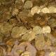 Buzos se topan con el mayor descubrimiento de monedas de oro jamás hallado en Israel