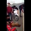 Video miren como este grupo de muchacho mascra un pobre perro Thailand teens on motorcycles beating up a dog on highway. *Very Cruel*