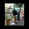 Video Que maldita pelea le rompieron la cabeza miren de que manera