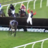 VIDEO Horrible caida de un caballo dios Jockey Goes Airborne After Falling Off His Horse