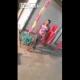 Video Pobre perro que masacre tan cruel cowardly beating a dog