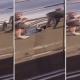 VIDEO Que diablo es esto solo miren A Spider Hiding in a Car Door Handle