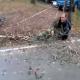Video Arbol al caer le cae en la espalda a este pobre hombre Lumberjack Nearly Killed By Falling Tree
