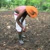 El Chuape - Yo Se Que Te Gusto (Video Oficial HD) 2015