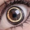 VIDEO Sony quiere que tus ojos actúen como una cámara fotográfica