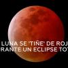 VIDEO: Un #meteorito se estrella en la #Luna durante el #eclipse de 'superluna de sangre'
